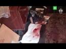 Каннибалы расчленили тело жителя поселка Новинка