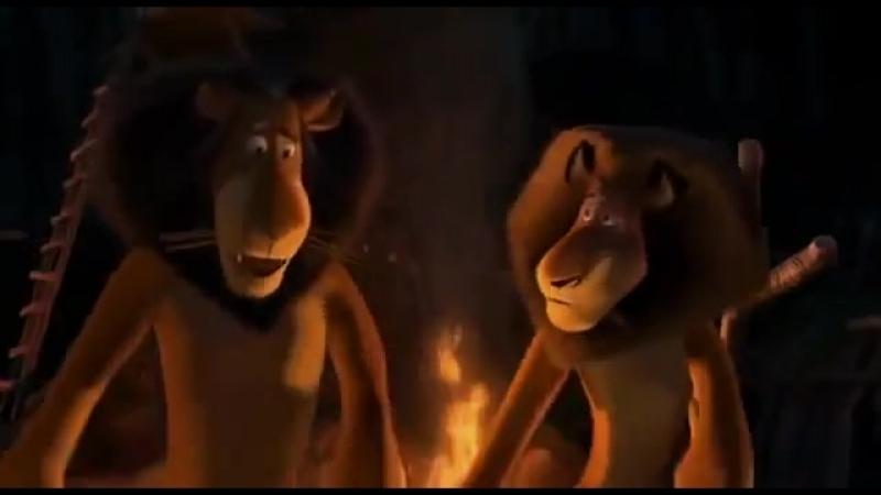 Мадагаскар 2.( Танец Алекса и его отца )