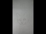 Mistik рисунок кота