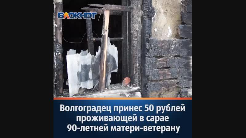 Сын принес 50 рублей проживающей в сарае 90 летней ветерану Волгограда