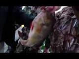 Рыбалка на раскатах, вращающиеся  блесны