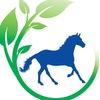 ПРОБИО подкормки & лакомства для лошадей