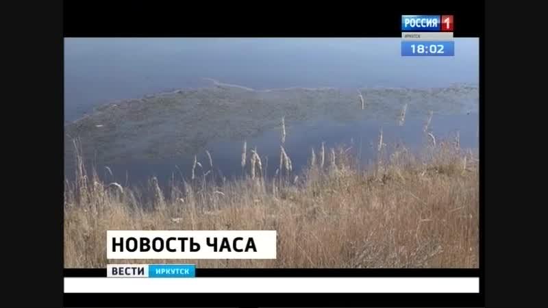 Огромное пятно нефтепродуктов обнаружено на реке Ангаре в Усолье-Сибирском