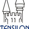 Консалтинговая компания ТенСилон| Екатеринбург