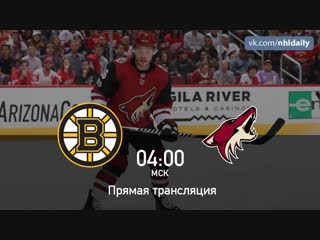 Boston Bruins 🆚 Arizona Coyotes