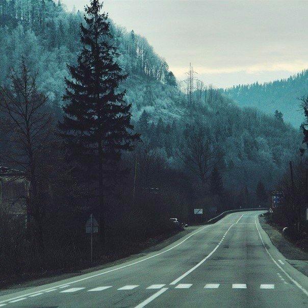 фото из альбома Алексея Губанова №6