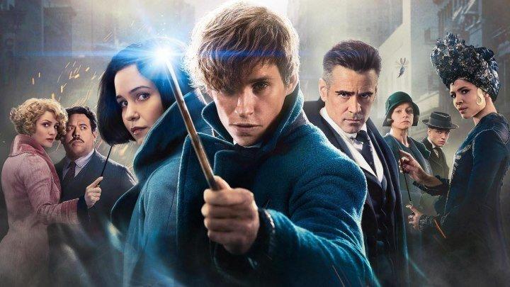 Фантастические твари и где они обитают (2016) Fantastic Beasts and Where to Find Them