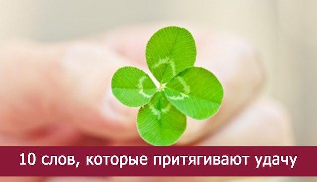 https://pp.userapi.com/c543100/v543100523/20a33/4UE7BuJV_3c.jpg