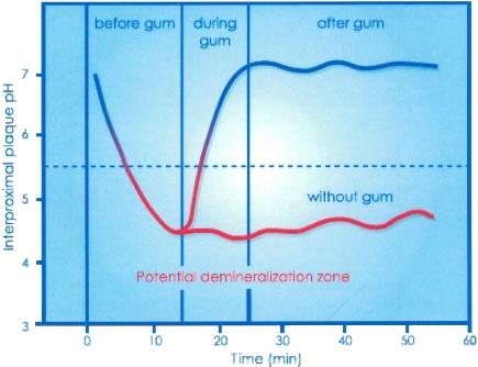 Стоматология. Сложное простыми словами: Чистите зубы дважды в день!