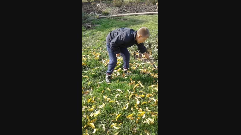 Артурчик помогает бабушке на даче убирать листья