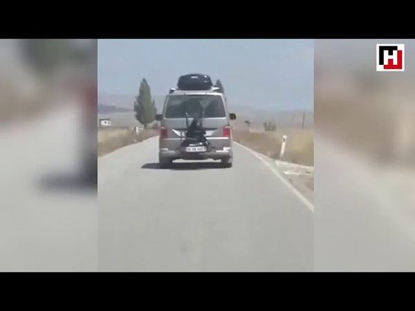 Driver slammed for carrying passenger tied on back of car Hürriyet TV