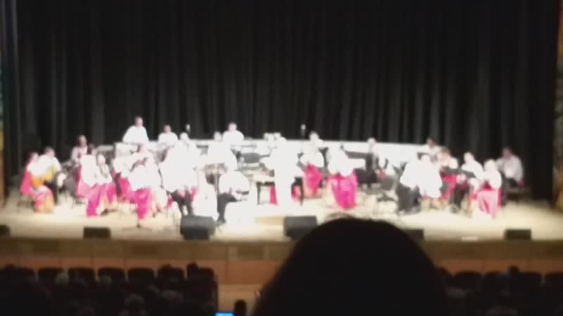 14 11 18 Выступление Брянского оркеста в ДРУЖБЕ видео 4