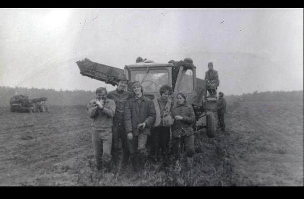 Сотрудники Научно  исследовательского института точного машиностроения помогают убирать картошку, 11 сентября 1975 года