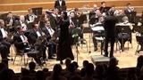 Генри Манчини - Полька для флейты с оркестром