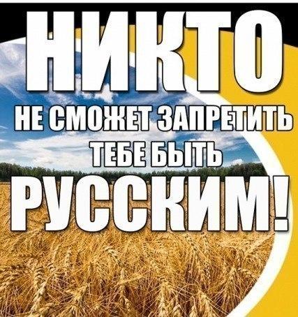 http://cs14102.vk.me/c421421/v421421863/305ed/lpHfDKQPyaM.jpg