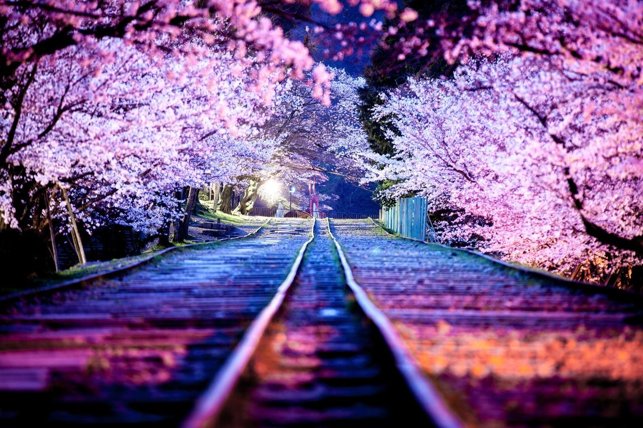 Я видел ночью, как пришла Весна