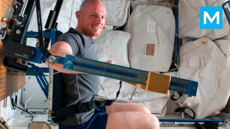 Real Astronauts Workouts on the Space Station   Muscle Madness