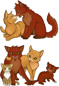 Когда появились коты воители