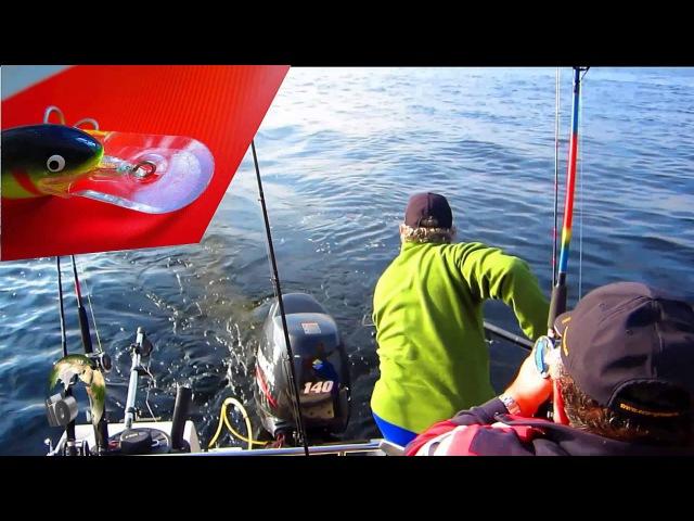 Рыбалка и охота в карелии 6 18 фотография