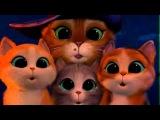 Кот в сапогах  Три Чертенка   смотреть онлайн фильм бесплатно