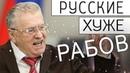 Жириновский про Валежник. Госдума 2018 - Papa Hype