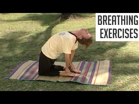 Yoga Asanas For Breathing Problems - Beginners Yoga for Asthama | Bronchitis | Respiratory Problem