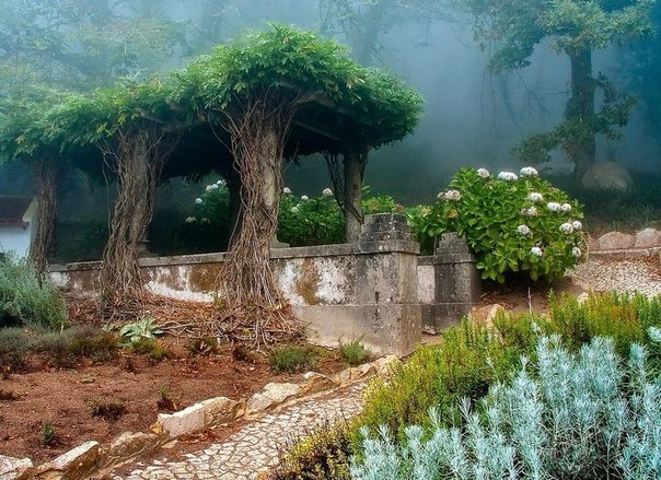 Старый сад в городе Синтра,