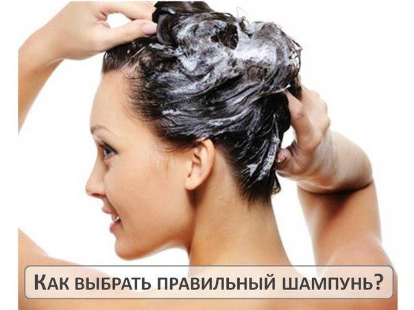 Перхоть и выпадают волосы что делать