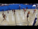 Dont Celebrate Too Early - Volleyball