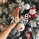 В Новом 2018 году каждому желаю: во всем быть 1-ыми, всегда иметь 2-ую половинку…