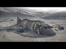 Шокирующее открытие Гамбийский аэропорт Юндум построили инопланетяне