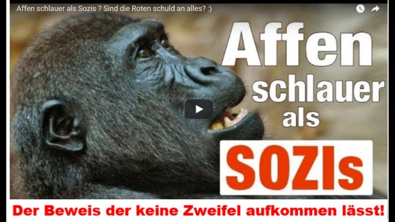 Affen schlauer als Sozis Sind die Roten schuld an allem