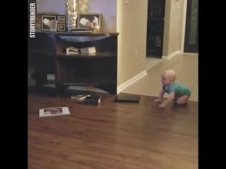 Ребёнок и собакен играют в догонялки