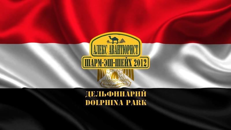Шарм эль Шейх 🇪🇬 Dolphina Park Алекс Авантюрист Дельфинарий с нашими