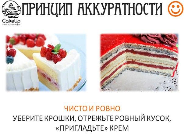 Правильно поданный снимок торта