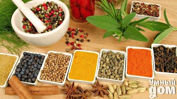 Чтобы ваше блюдо получилось ароматным и вкусным нужно знать, какие именно специи подходят к тем или иным продуктам Для мяса: красный, черный, душистый перец, гвоздика, базилик, майоран, тимьян, тмин, куркума, имбирь, орегано, лавровый лист. Для птицы: карри, тимьян, майоран, розмарин, шалфей, тимьян, базилик, красный и черный перец. Для рыбы: лавровый лист, тмин, имбирь, белый и душистый перец, лук, кориандр, гвоздика, горчица, укроп, тимьян, мята. Для дичи: базилик, тимьян, розмарин, душистый…
