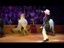 Цирк шапито Арена-Ягуар|ТЦ Европа на Московской| c 3.11 по 25.11