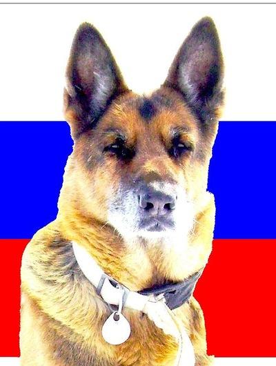 Джони Джон, 15 ноября 1990, Новосибирск, id107622102
