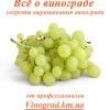 Всё о винограде - Vinograd.cc