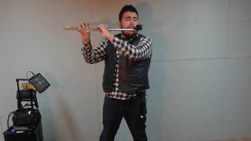 Carrie europe flute cover