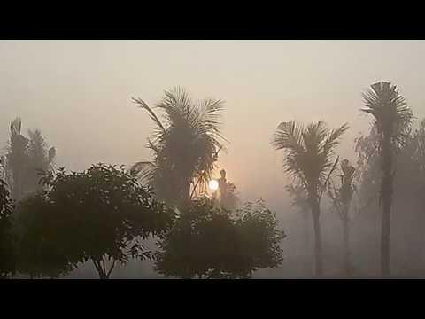 Обыкновенное чудо природы туман