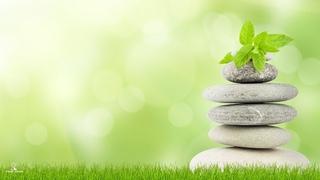 Deeply Relaxing Meditation Music, Calming Music, Study Music, Soft Relaxing Mind and Body Music