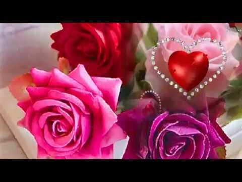 🎵Поздравление с Днем Рождения красивой женщине🎵 Nothing-like-love