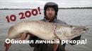 Рыбалка на Оби в Томской области Трофейная щука в сентябре
