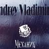 Андрей Владимиров  в Механике 3 августа
