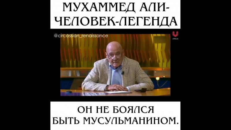 Circassian_renaissance_2BjmBYL7n6AN.mp4