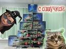 Приколы с котами – Смешная озвучка животных – МОМО с whatsapp АТАКУЕТ! Самое смешное видео - PSO