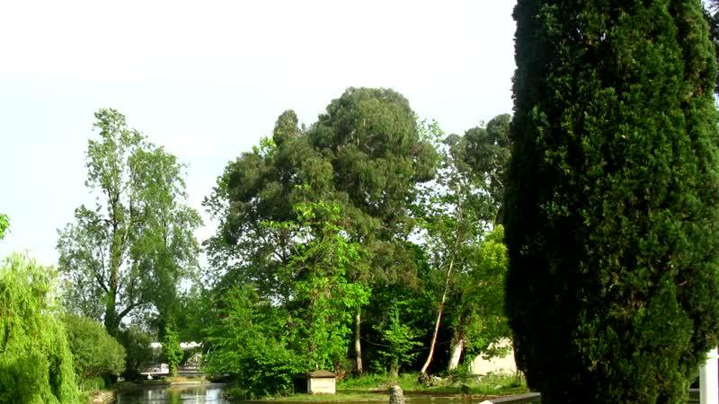 Неизвестная Абхазия - Гилева А.В.