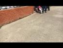 Детский лагерь Английские Каникулы — Live