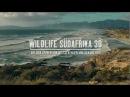Wildlife Südafrika - Auf den Spuren von weißen Haien und den Big Five (Deutscher Trailer)